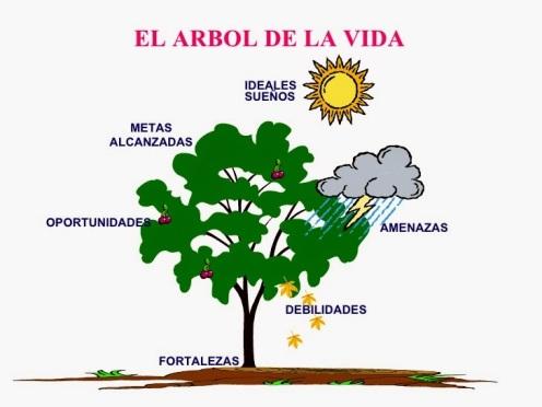 proyecto-arbol-vida-1-728